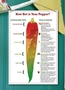Picture of Chili Pepper Scales Sign