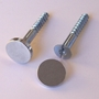 Picture of 2x Metal Fixings Screws & Caps
