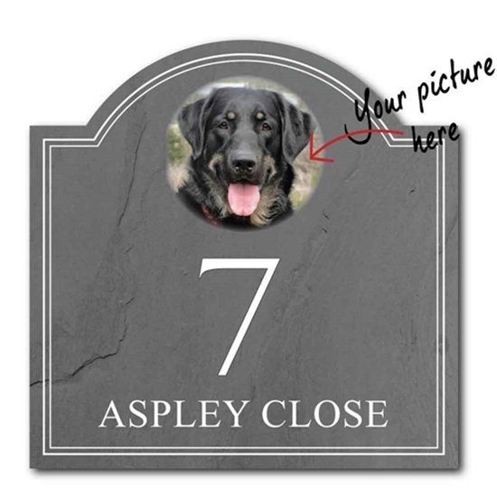 Picture of Pet Photo Personalised House Number Sign