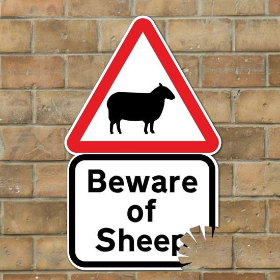 Picture of Funny Beware of Sheep Sign with bite mark, Joke Road Sign, Funny Farmer Gift