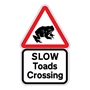 Picture of Slow Toads Crossing Sign