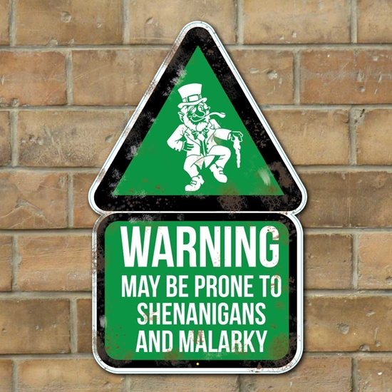 Picture of Leprechaun WARNING! May Be Prone to Shenanigans & Malarky Sign