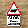 Picture of Cows Crossing Sign