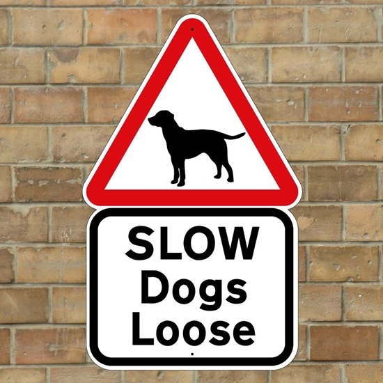 Picture of Slow Dogs Loose Sign