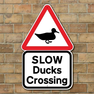 Picture of Slow Ducks Crossing Sign