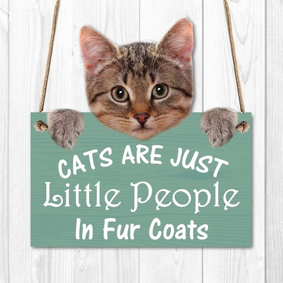 Picture of Funny Cat Sign