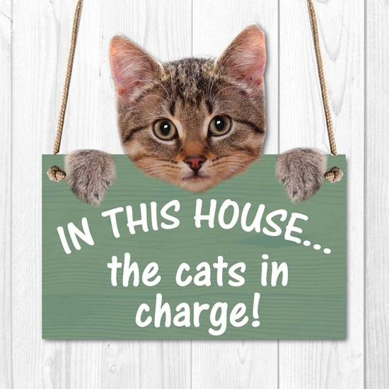 Picture of CATS IN CHARGE SIGN