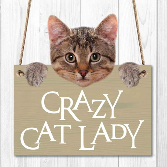Picture of CRAZY CAT LADY SIGN