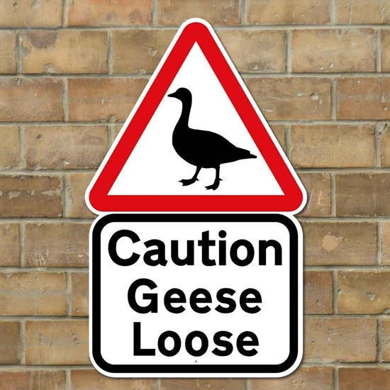 Picture of GEESE SIGN
