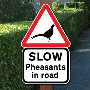 Picture of PHEASANTS IN ROAD SIGN