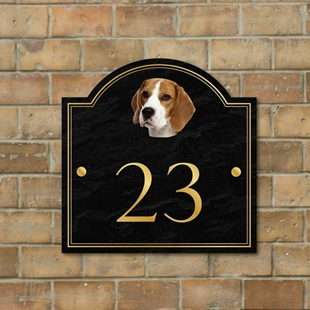 Picture of Beagle House Sign