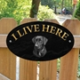 Picture of Black Lab I Live Here Sign