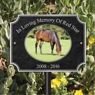 Picture of Picture Memorial Plaque