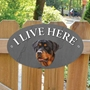 Picture of Rottweiler I Live Here Gate Sign