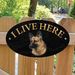 Picture of German Shepherd I Live Here Gate Sign