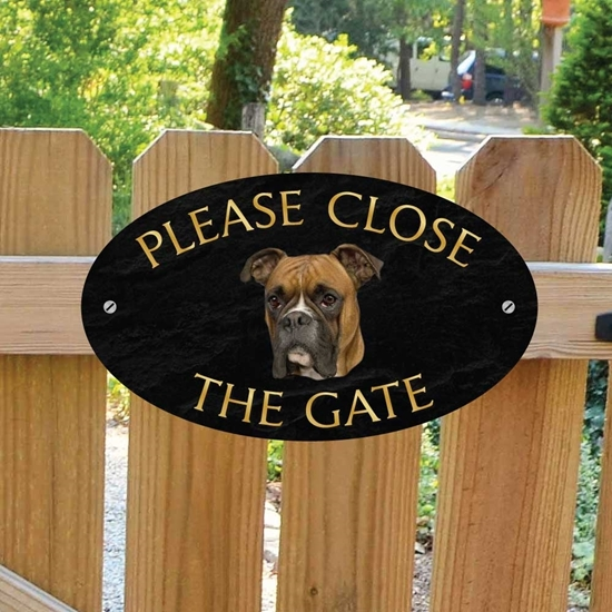 Picture of Boxer Sign