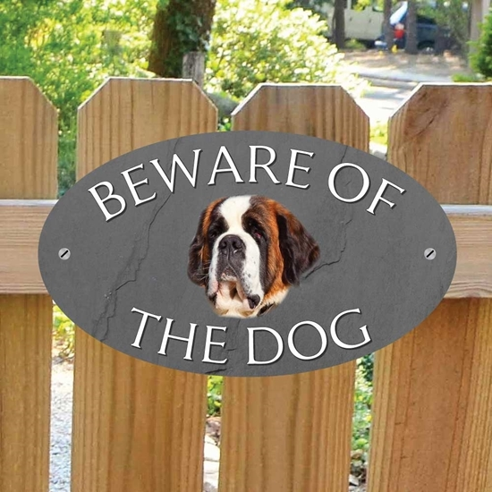 Picture of St Bernard Beware of The Dog Gate Sign