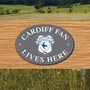Picture of CARDIFF FAN LIVES HERE House Door Plaque