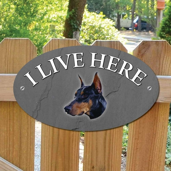 Picture of DOBERMAN Dog Gate Sign