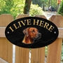 Picture of RHODESIAN RIDGEBACK Dog Gate Sign