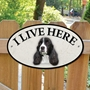 Picture of English Springer Spaniel I Live Here Sign