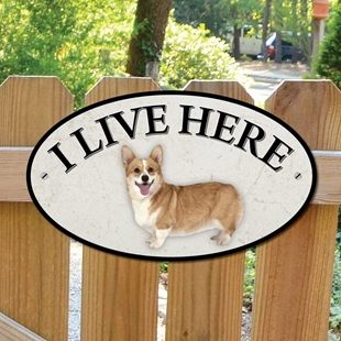 Picture of Corgi Dog I Live Here Sign