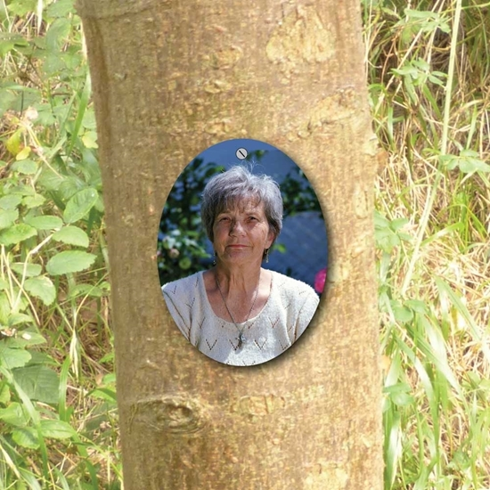Picture of Outdoor Photo Tree Marker Plaque