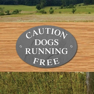 Picture of DOG RUNNING FREE Sign