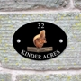 Picture of Personalised Red Squirrel House Sign