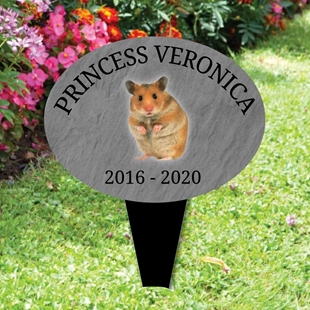 Picture of Personalised Hamster memorial plaque