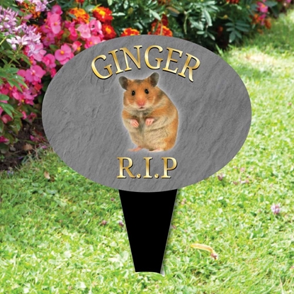 Picture for category Pet Memorial