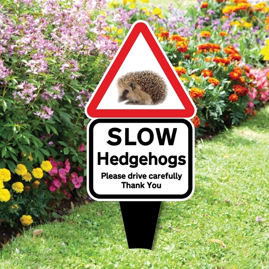 Picture of Slow Hedgehog Road Safety Sign with spike