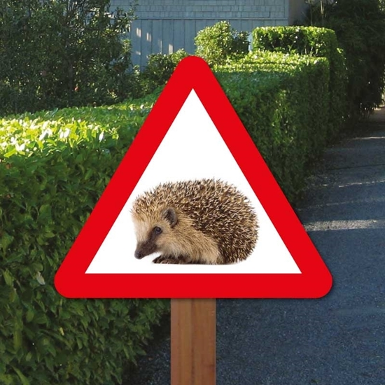 Picture of Hedgehog Triangle Sign